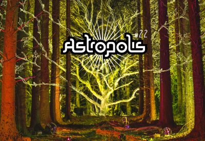 [Festival] Astropolis #22