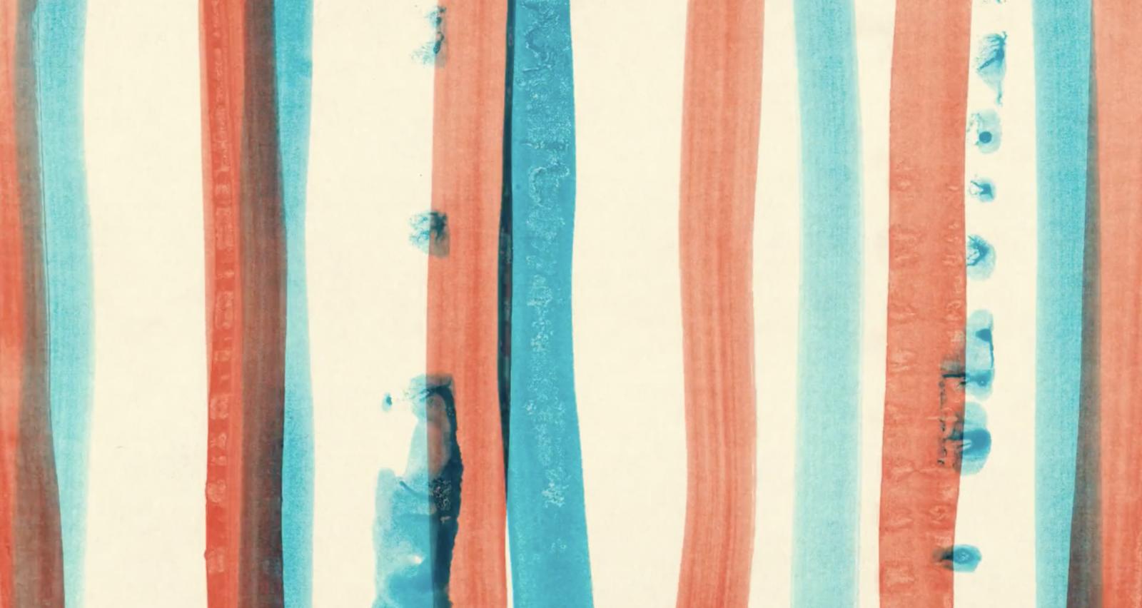 Première clip : «Comme le canard» de Rachel Langlais